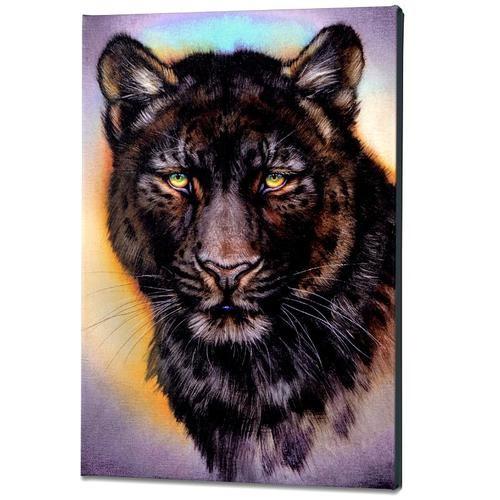Katon Black Phase Leopard