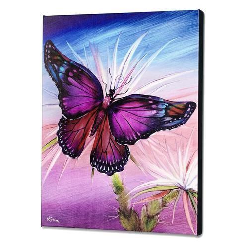 Katon Rainbow Butterfly
