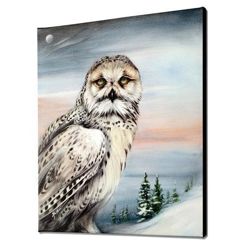 Katon Snow Owl In Alaska