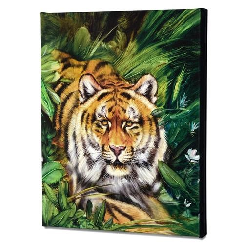 Katon Tiger Surprise 2