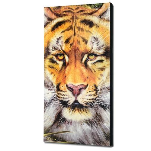 Katon Tiger Surprise