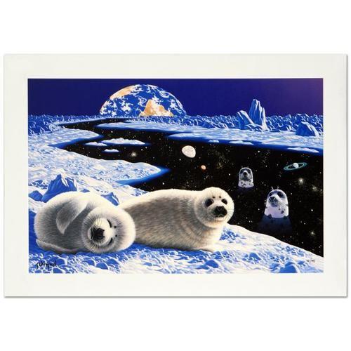 Schimmel Arctic Window